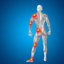Joints Human Anatomy Exploring The Causes And Treatments Of Chronic Joint Pain Power