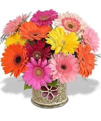 flower delivery st louis 26 best birthday flowers images on florists birthday