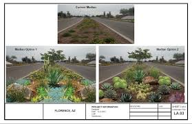 landscaping company and projects arizona