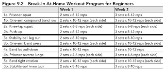 weight loss workout plan for men at home fat loss training program 14day aya audibert