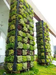 vertical gardens india