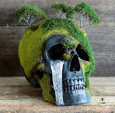 bonsai skulls bring the dead to architecture design