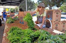 native plants at csu dominguez nonprofit food forward hungry for volunteers at torrance farmers