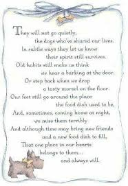 Poems Of Comfort For Loss 369 Best Dog Heaven And Pet Loss Images On Pinterest Dogs Pet