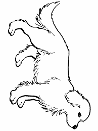 golden retriever puppy coloring pages printable coloring