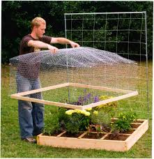 Planning A Square Foot Garden With Vegetables Wire Mesh