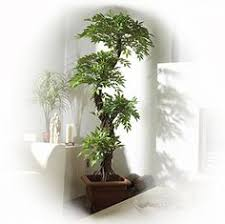 7 dracaena silk tree artificial tree indoor trees and wood trunk