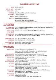 resume cv format cv format pdf resume form pdf newsoundco resume template