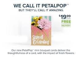 flower cards greeting cards with living flowers petalpop
