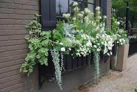 17 best images about flower boxes design ideas on pinterest