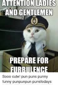 Pun Meme - atention ladies and gentlemen prepare for furbulence sooo cute
