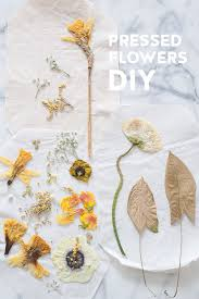 flower press d e s i g n l o v e f e s t diy flower press 5