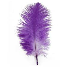 purple feather leegoal home decor purple ostrich feathers 10 15cm