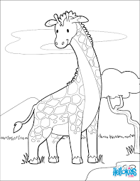 giraffe near a lake coloring pages hellokids com