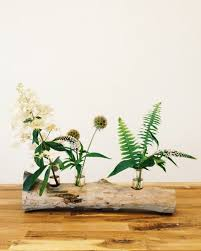 Test Tube Vase Holder 16 Best Test Tube Images On Pinterest Test Tubes Plants And