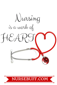 quotes images work best 25 nursing quotes ideas on pinterest nurses day quotes