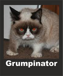 Grumpy Cat Meme Happy - image 547715 grumpy cat know your meme