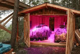 led marijuana grow lights cob grow light review arcturus growthstar technologies inc