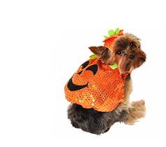 Dog Minion Halloween Costumes 25 Trendy Dog Halloween Costumes 25 U2013 Iheartdogs