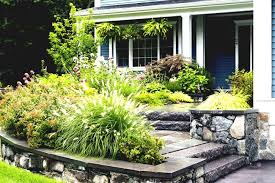 Front Yard Landscaping Without Grass - front lawn landscaping ideas without grass home design ideas