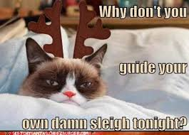 Grumpy Cat Memes Christmas - sketchy santas sketchy santa fails cheezburger