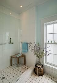 Bathroom Window Trim The Best Bathroom Bathroom Traditional With White Window Trim