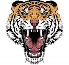 best 25 tribal tiger tattoo ideas on pinterest tiger tattoo