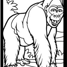 coloring page of gorilla coloring page gorilla kids drawing and coloring pages marisa