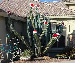 Home And Garden Christmas Decoration Ideas Beautiful Outdoor Christmas Decorating Ideas Arafen