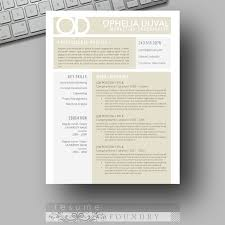 Modern Resume Sample by 122 Best Resume Template For Instant Download Images On Pinterest