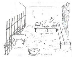 goat barn floor plans surprising goat housing plans gallery best ideas exterior
