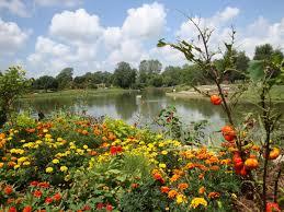 Overland Park Botanical Garden Overland Park Arboretum And Botanical Garden Directory