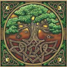 949eba1cadb497b9b1d437a5378bc990 tree of images tree of