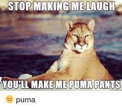 Puma Meme - 25 best memes about puma pants meme puma pants memes