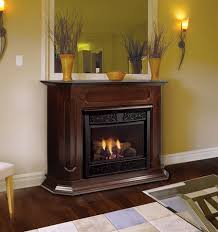 Majestic Vent Free Fireplace by Chesapeake 24 Inch Vent Free Gas Fireplace Remote Ready With