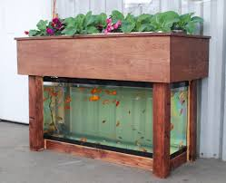 diy aquaponics plans how to build your own self sustaining