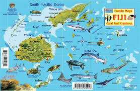 Map Of Coral Reefs Fiji Map U0026 Reef Creatures Guide Franko Maps Laminated Fish Card