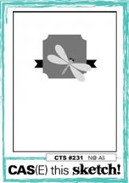 butterfly basics birthday for cas e this sketch 231 stampin u0027 hoot