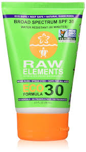 ecoshield home design reviews amazon com raw elements eco form sunscreen stick spf 30 plus