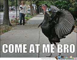 Happy Thanksgiving Meme - 14 thanksgiving memes to help you survive the holiday with your family
