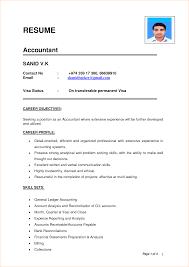 Download Resume Sample In Word Format Resume Examples Word Format Resume Templates Word Format Resume
