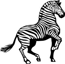 zebra clipart free download clip art free clip art on