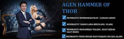 hammer of thor forex home facebook