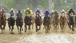 Kentucky how far can a horse travel in a day images Which kentucky derby runners would benefit from wet track Q&amp