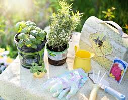 Potted Herb Garden Ideas Kitchen Herb Garden Ideas