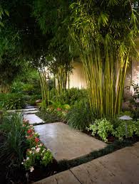 lush vegetation plants and pavers for garden landscape part of