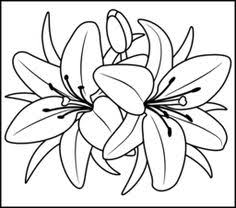 color by number coloring pages for adults lily printable color