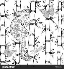 download coloring pages chameleon coloring page chameleon