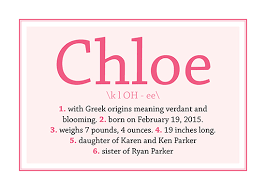 birth announcements baby name dictionary at minted com