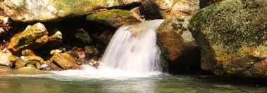 Pictures Of Backyard Waterfalls by Garden Pond Waterfalls Everything Ponds Com